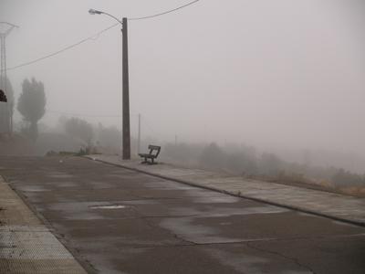 Plenas con niebla