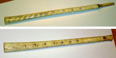 Flautas de ala de buitre